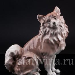 Фарфорвая статуэтка собаки Шпиц, Karl Ens, Германия, 1920-30 гг.