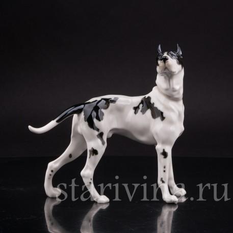 Статуэтка собаки из фарфора Дог, Hutschenreuther, Германия, 1970 гг.
